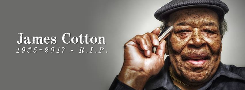 obit cotton
