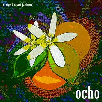 Orange Blossom Jamboree 2017 Compilation Cover